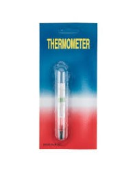 Small Floating Thermometer