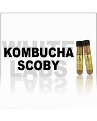 White Labs WLP600 Kombucha SCOBY